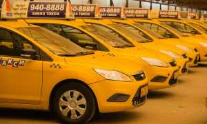 Желтые номера на машине, какие они, как их получить